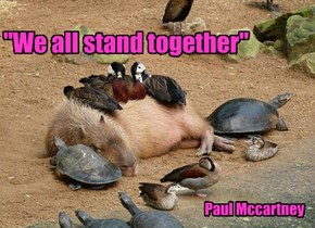 """We all stand together"""