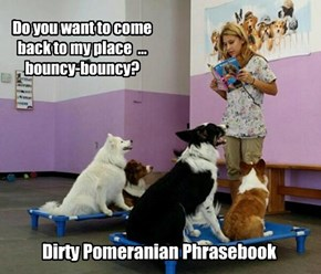 Dirty Pomeranian Phrasebook