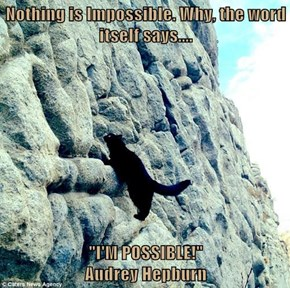 """Nothing is Impossible. Why, the word itself says....  """"I'M POSSIBLE!""""                                                        Audrey Hepburn"""