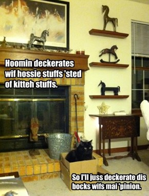 Hoomin deckerates wif hossie stuffs 'sted of kitteh stuffs.