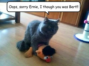 Oops, sorry Ernie, I though you was Bert!!