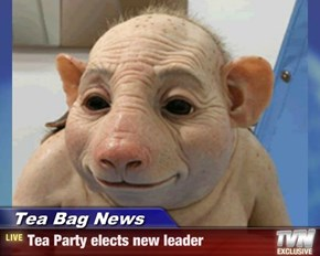 Tea Bag News - Tea Party elects new leader