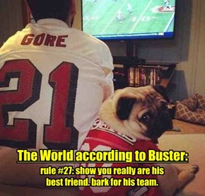 The World according to Buster: