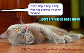 """Pets Are Dazed"" (TTO ""Yesterday Once More"" by The Carpenters)"