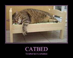 CATBED
