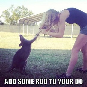 ADD SOME ROO TO YOUR DO