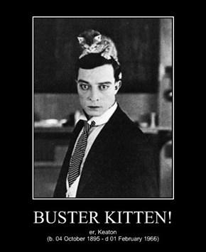 BUSTER KITTEN!