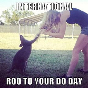 INTERNATIONAL  ROO TO YOUR DO DAY