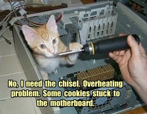 No,  I  need  the  chisel.  Overheating problem.  Some  cookies  stuck  to  the  motherboard.