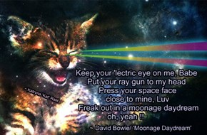 Keep your 'lectric eye on me, Babe               Put your ray gun to my head                Press your space face                close to mine, Luv                 Freak out in a moonage daydream      oh, yeah !!