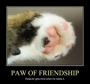 PAW OF FRIENDSHIP