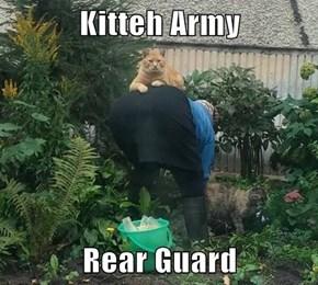 Kitteh Army  Rear Guard