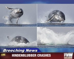 Breeching News -       HINDENBLUBBER CRASHES
