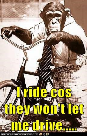I ride cos they won't let me drive.....