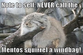 Note to self: NEVER call the  Mentos squirrel a windbag!