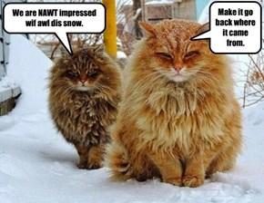 We are NAWT impressed.