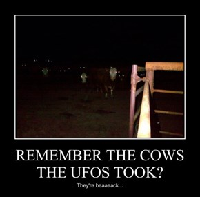 REMEMBER THE COWS THE UFOS TOOK?