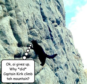 "After  watching  William  Shatner's  ""Captain  Kirk  is  Climbing  a  Mountain""  video,  one  fan  was  inspired  to  do  further  research."