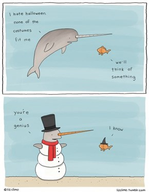 Narwhal Needs a Costume