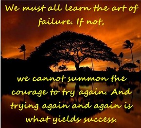 We must all learn the art of failure. If not,  we cannot summon the courage to try again. And trying again and again is what yields success.