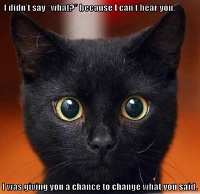 """I didn't say """"what?"""" because I can't hear you.   I was giving you a chance to change what you said."""
