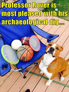 Professor Rover is most pleased with his archaeological dig....