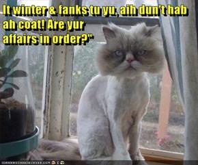 """It winter & fanks tu yu, aih dun't hab ah coat! Are yur                                                                                                                                                                     affairs in order?"""""""