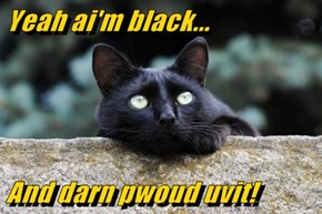 Yeah ai'm black...  And darn pwoud uvit!