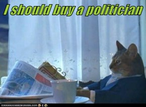 I should buy a politician