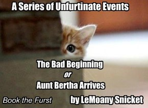 A Series of Unfurtinate Events