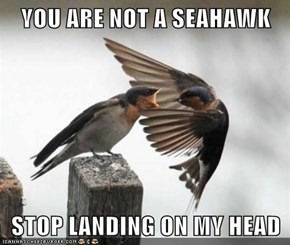 YOU ARE NOT A SEAHAWK  STOP LANDING ON MY HEAD