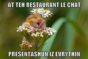 AT TEH RESTAURANT LE CHAT  PRESENTASHUN IZ EVRYTHIN
