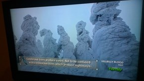 Thanks for the Clarification, Discovery Channel