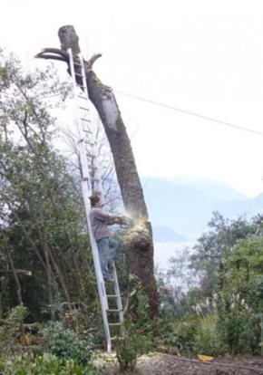 At Least He Won't Hit Any Power Lines!