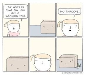 Boxed Up Paranoia