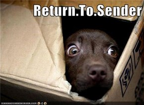 Return.To.Sender
