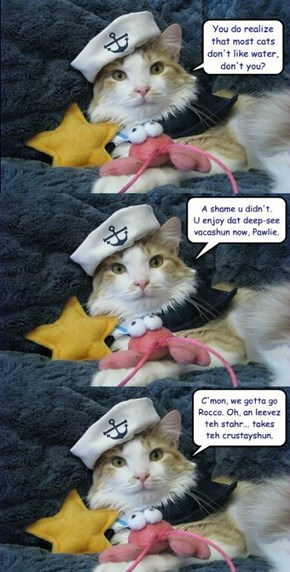 Pawlie Gatto... now sleepin wif teh fishiez