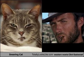 Sneering Cat Totally Looks Like western movie Clint Eastwood