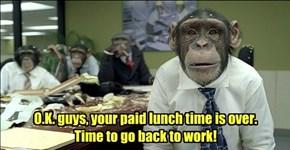 Gotta get my monkeys worth!
