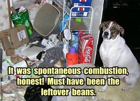 It  was  spontaneous  combustion, honest!  Must have  been  the leftover  beans.
