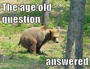 The age old question  answered