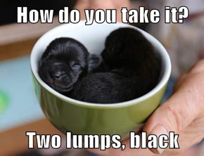How do you take it?  Two lumps, black