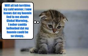 Wiff teh eggstraordinary Arctic Cold across teh US, untold millions ob American kitties realize dare hoomins had misled dem abowt Global Warming!