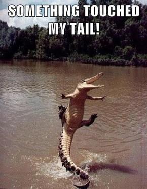 Scaredy Croc