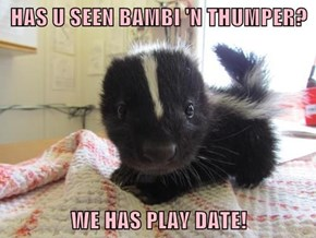 HAS U SEEN BAMBI 'N THUMPER?  WE HAS PLAY DATE!