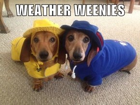 WEATHER WEENIES