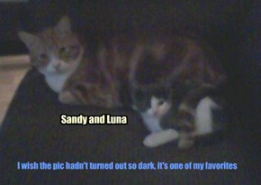 Sharing memories of Sandy Sunball...