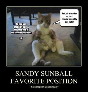 SANDY SUNBALL FAVORITE POSITION