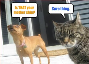 Is THAT your mother ship?