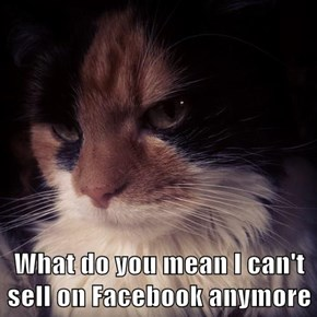 What do you mean I can't sell on Facebook anymore
